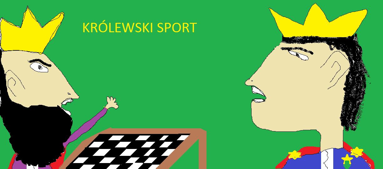 szachy, królewski sport, autor, rysunek, Mikołaj Czerwiński, uczeń, Gimnazjum nr 13 im. Unii Europejskiej we Wrocławiu, interaktywny podręcznik szachowy, lekcje szachowe, piękno szachów, walka szachowa,