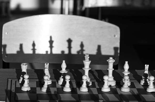 Białe mają czarne cienie! Zdjęcie Rafała Małeckiego.