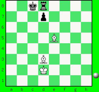 chessdiag807