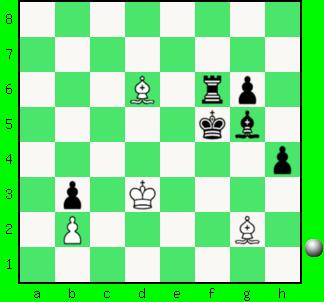 chessdiag808