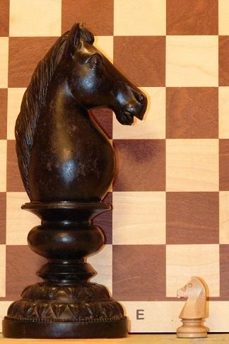 skoczek, szachy, interaktywny podręcznik szachowy