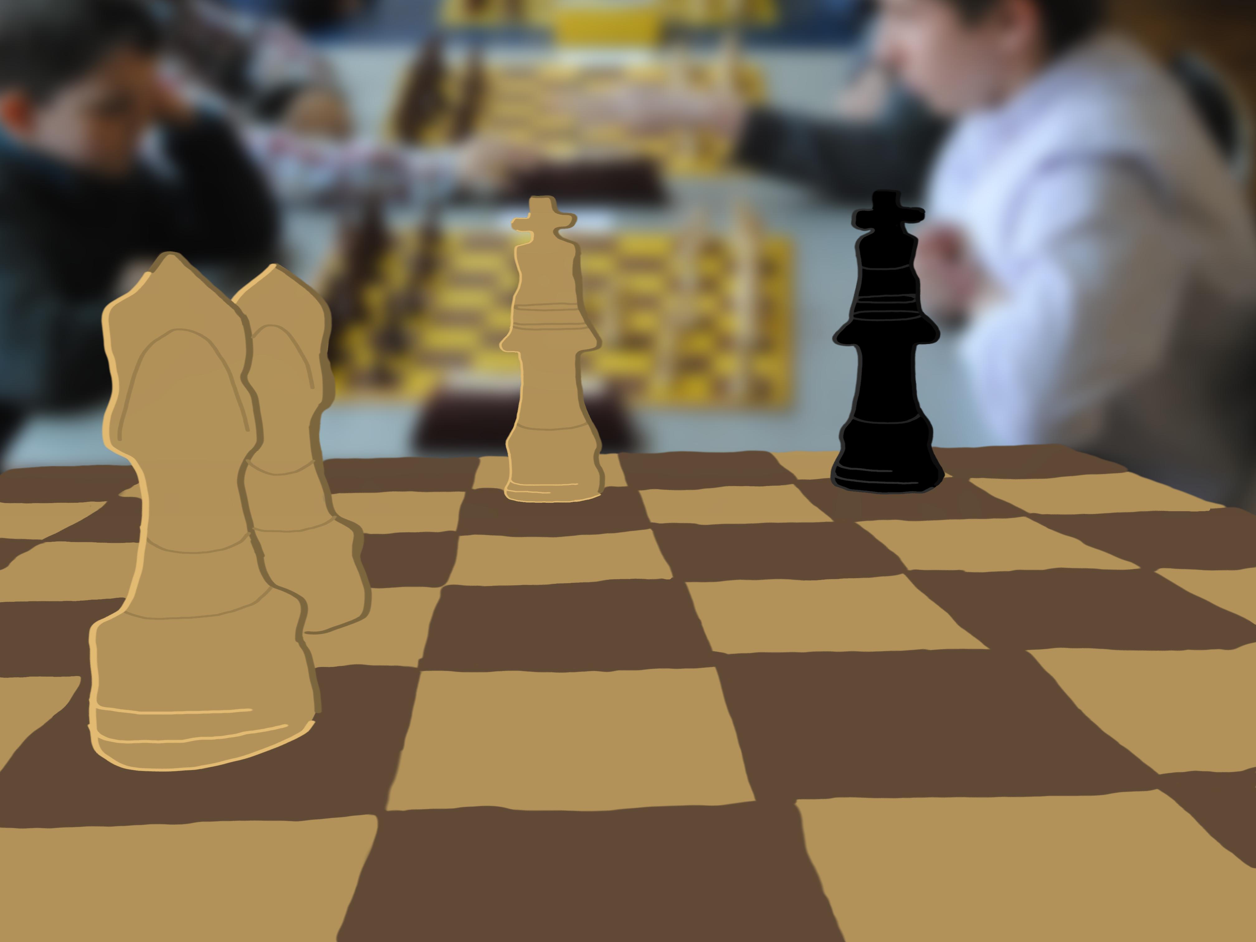 król, para gońców, goniec, piękno szachów, szachownica, grafika, Tomasz Dulny, Gimnazjum nr 13 im. Unii Europejskiej we Wrocławiu, szachy dla dzieci, bierki szachowe, interaktywny podręcznik szachowy, matowanie dwoma gońcami,