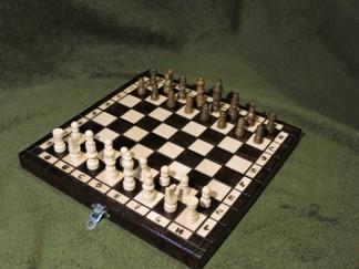 Pamela Salitra, Gimnazjum nr 13 im. Unii Europejskiej we Wrocławiu, zdjęcie, płótno, pozycja wyjściowa, interaktywny podręcznik szachowy, bierki szachowe, szachownica, szachy dla dzieci, lekcje szachowe, nauka szachów dla poczatkujących, piękno w szachach, szachowa sztuka,