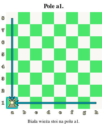 biała wieża, oznaczenia pól, nazwy, białe i czarne pola, szachownica, diagram, interaktywny podręcznik szachowy, lekcje szachowe, szachy dla dzieci, strona szachowa, nauka szachów,
