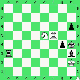 wieża, skoczek, matowanie wieżą i skoczkiem, daj mata w 1 ruchu, mat w jednym posunięciu, zadanie, zadania szachowe, diagram, apronus, interaktywny podręcznik szachowy, król, lekcje szachów, nauka gry w szachy dla dzieci,