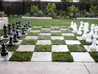 szachownica trawiasta, Grassy Chess Board,