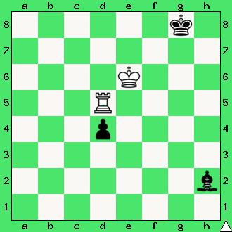 Zinowij Markowicz Birnow, 1946, studium, wygrana, wieża, goniec, pionek, króle, diagram, apronus, interaktywny podręcznik szachowy, zadania szachowe studia, kompozycja szachowa,